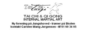 Tai Chi & Qi Gong @ Jungshoved skole